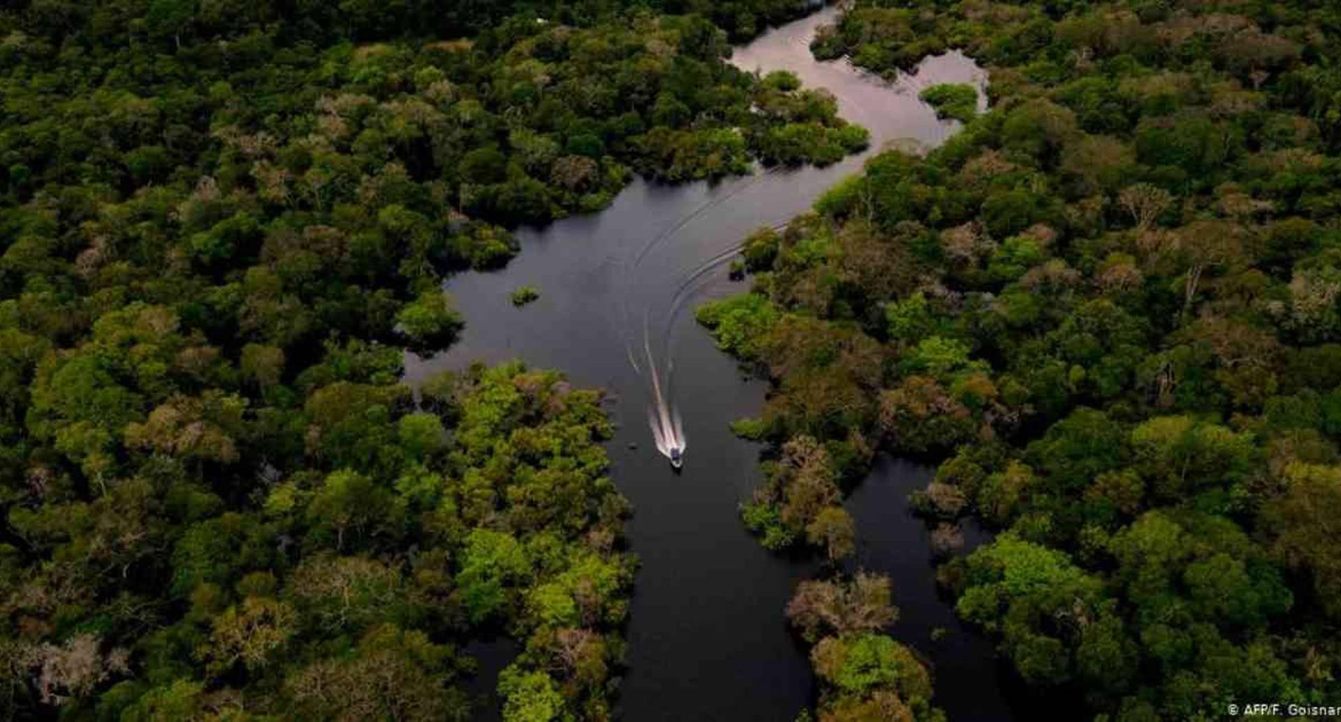 La deforestación amenaza con sucumbir la Amazonia, el pulmón verde del planeta. Foto: F. Goisnard / AFP vía DW.
