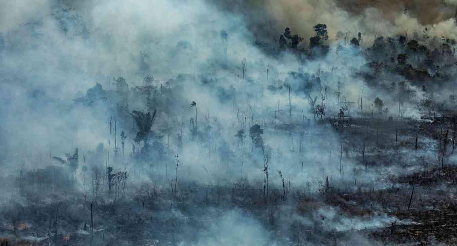 Ni la presión realizada por la permisividad del Gobierno en los incendios registrados en la Amazonia brasileña en 2019, han hecho desistir al presidente Bolsonaro de intervenir esa región. Foto: archivo Víctor Moriyama / Greenpeace.