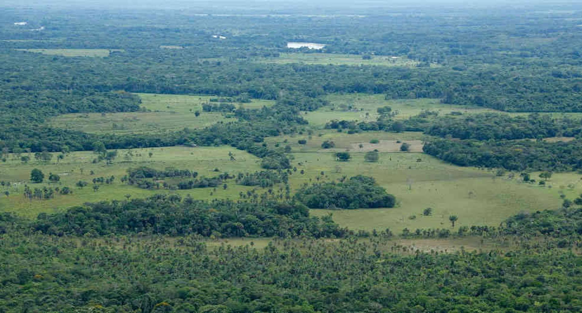 El 70% de la deforestación del país en 2018 se concentró en la Amazonia. Foto: Cormacarena.