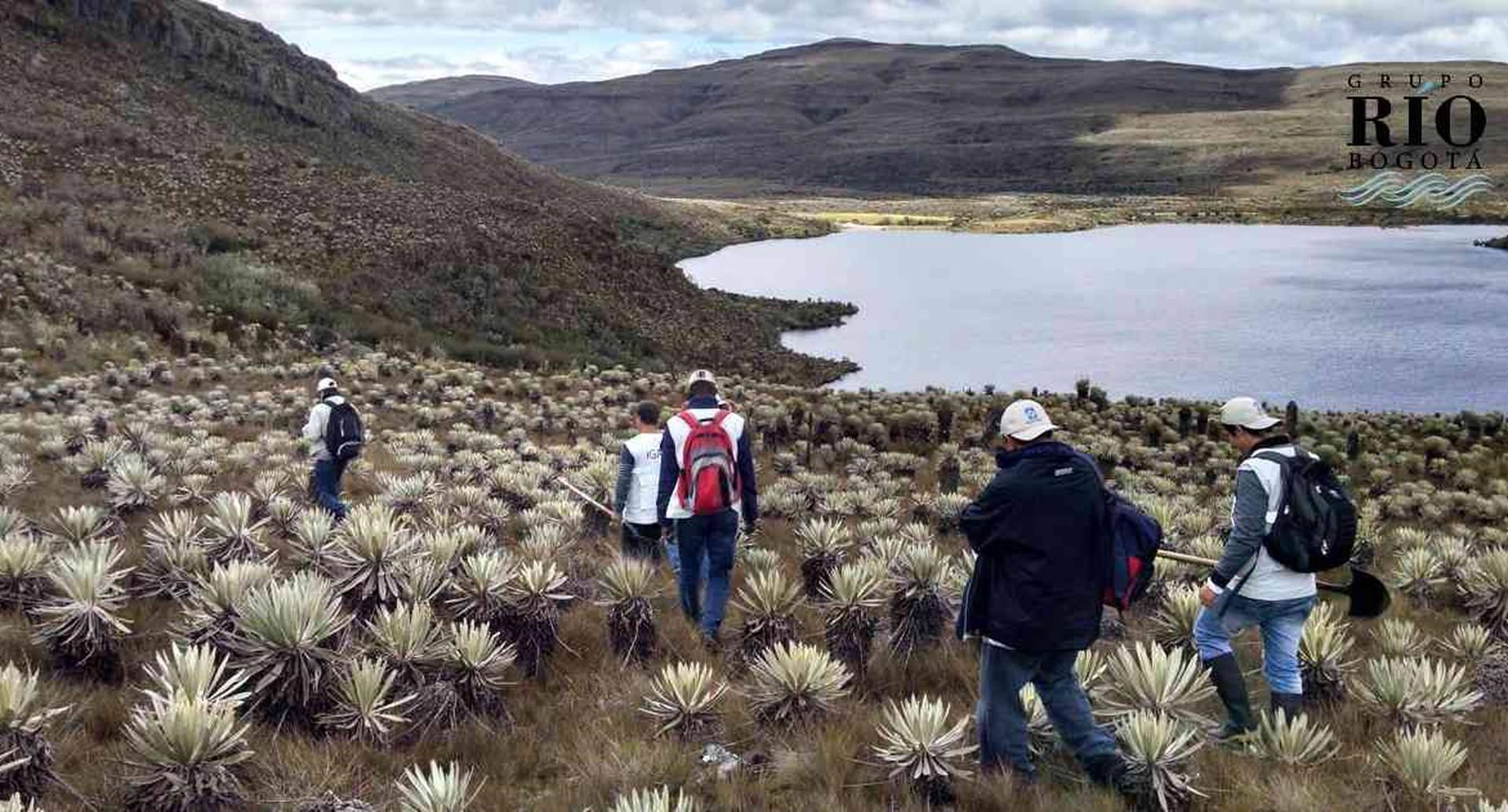 El páramo de Sumapaz será uno de los ecosistemas estudiados por el IGAC.