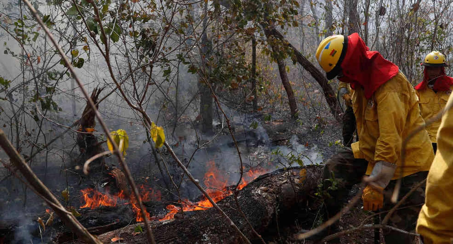 Los bomberos están haciendo todos los esfuerzos para detener los fuegos. Foto: AP