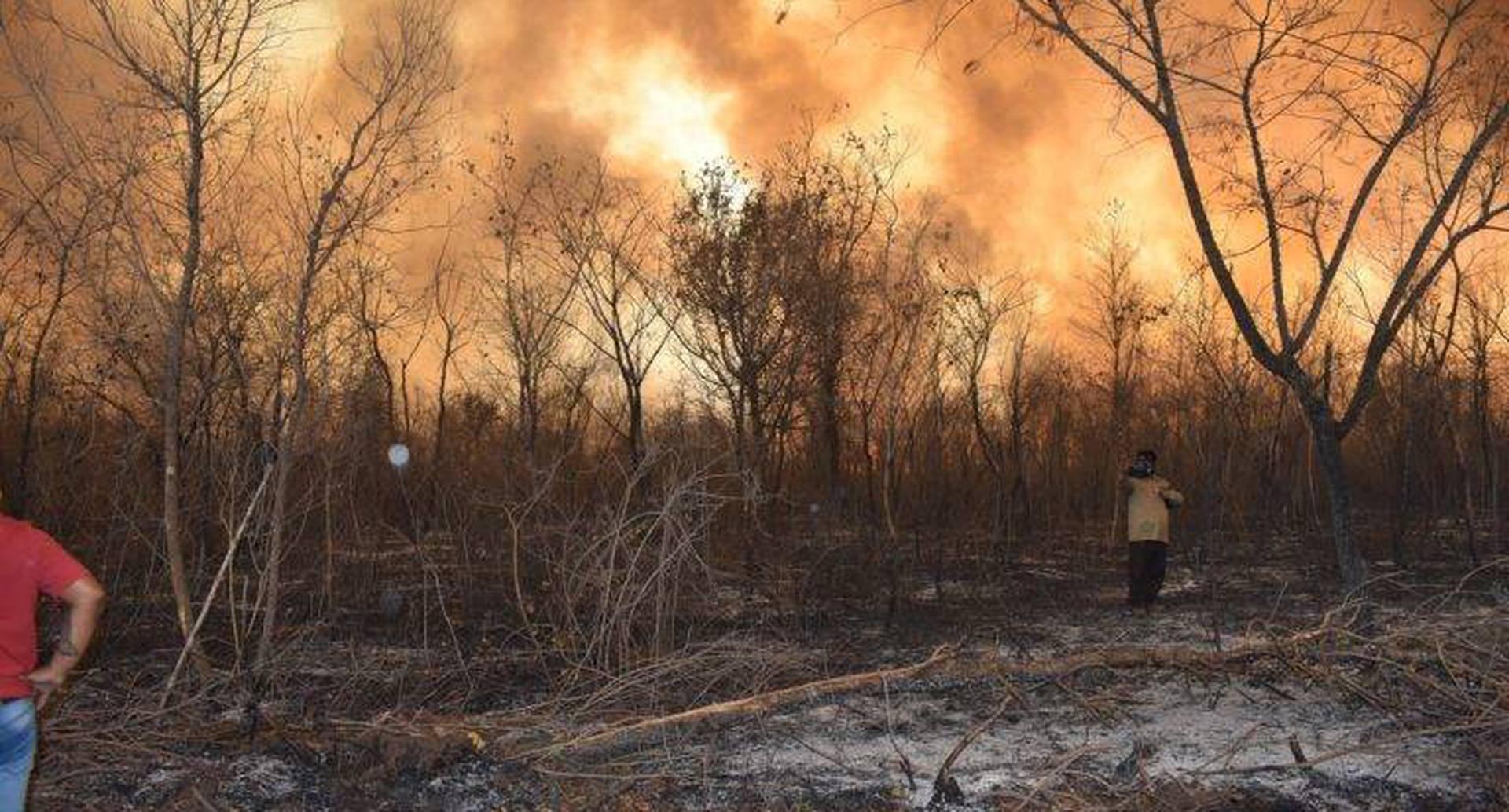 El horizonte es fuego. Las llamas avanzan y alguna cuadrilla de voluntarios observa el tamaño del desastre. Crédito: Juan de Dios Garay H.