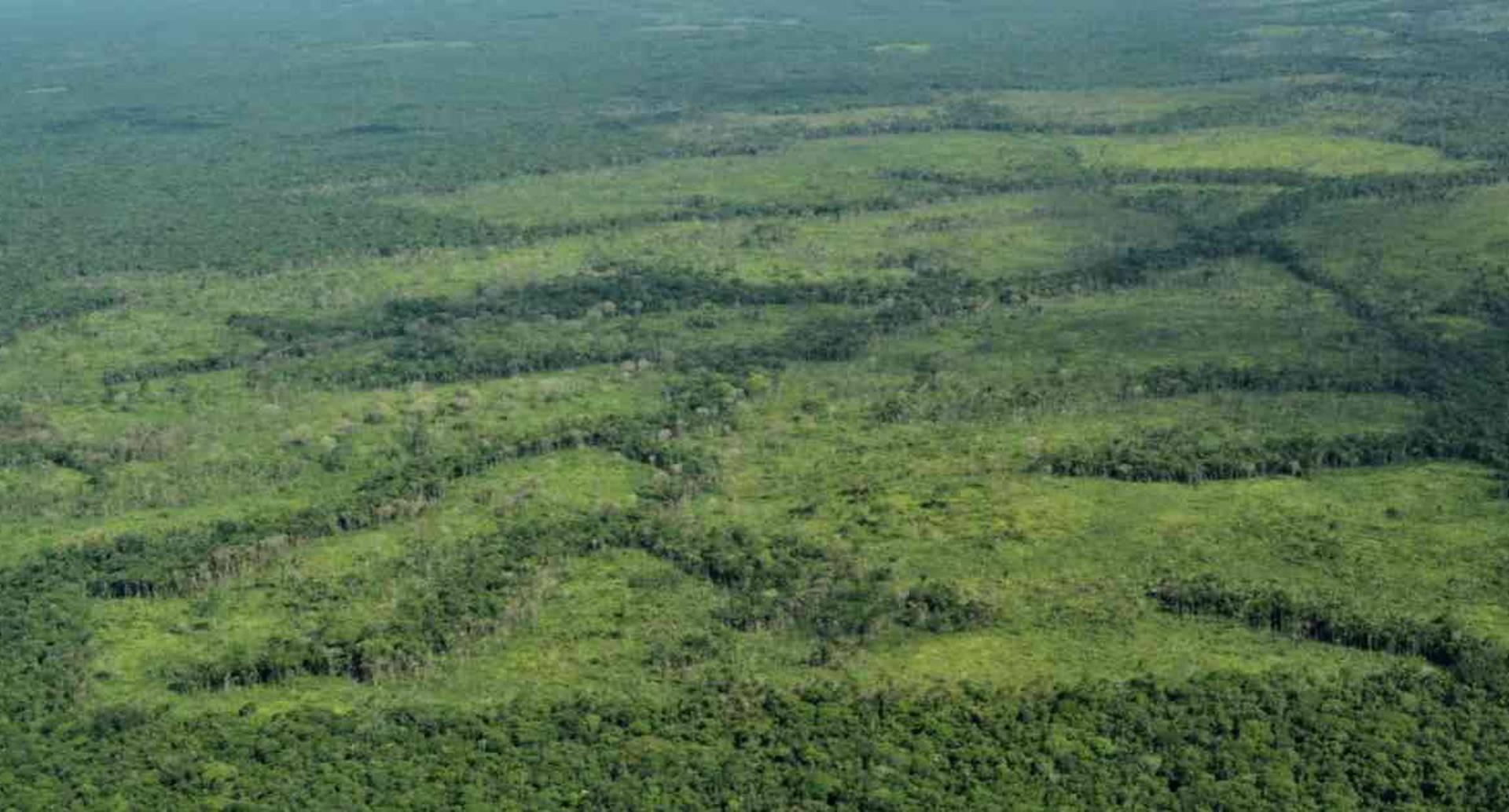 La deforestación para la extensión ganadera en la Sierra de La Macarena ha aumentado notoriamente en los últimos tres años. Foto: Rodrigo Botero.