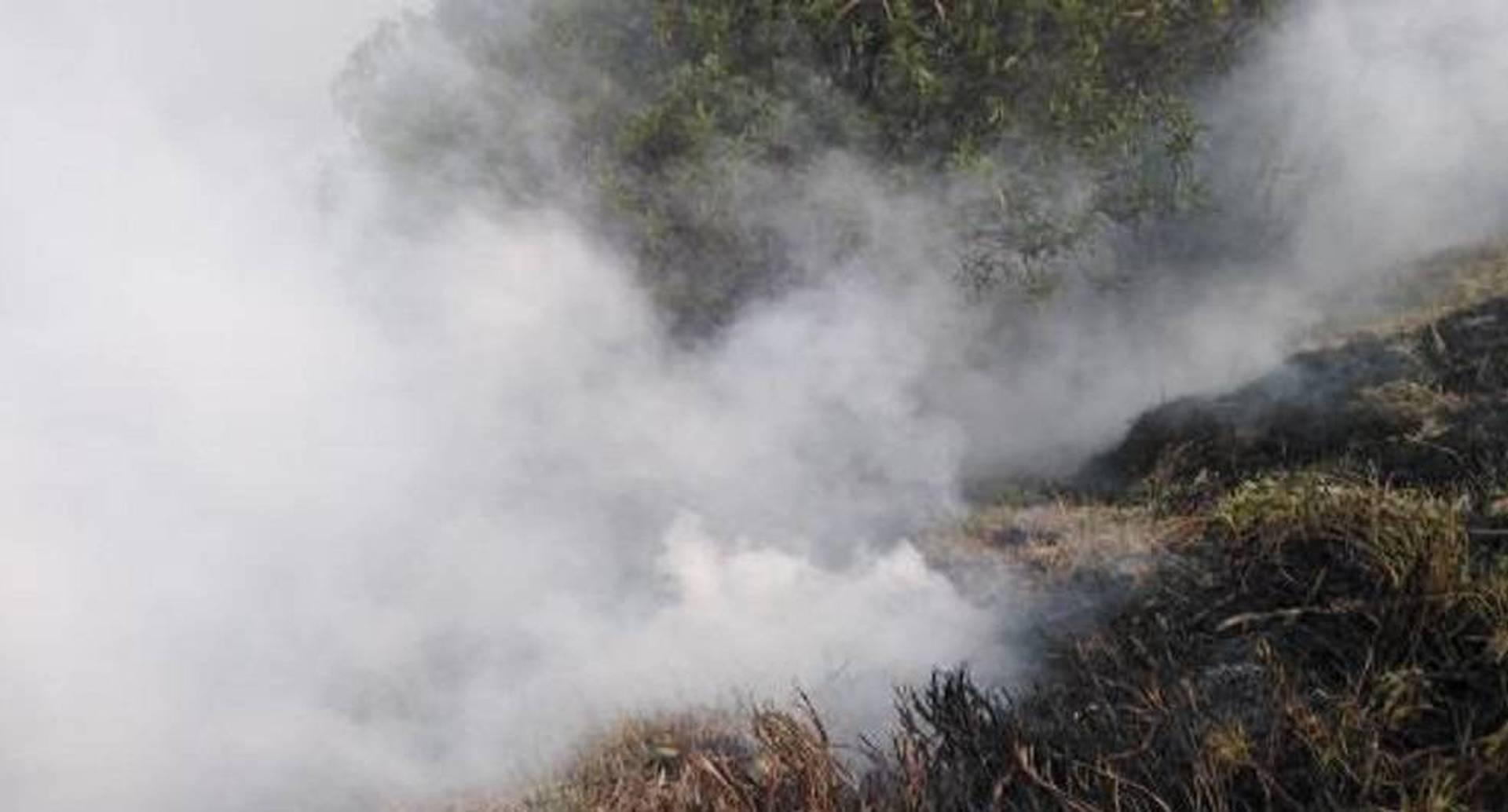 Incendio forestal en Fontibón / Foto: Bomberos Bogotá