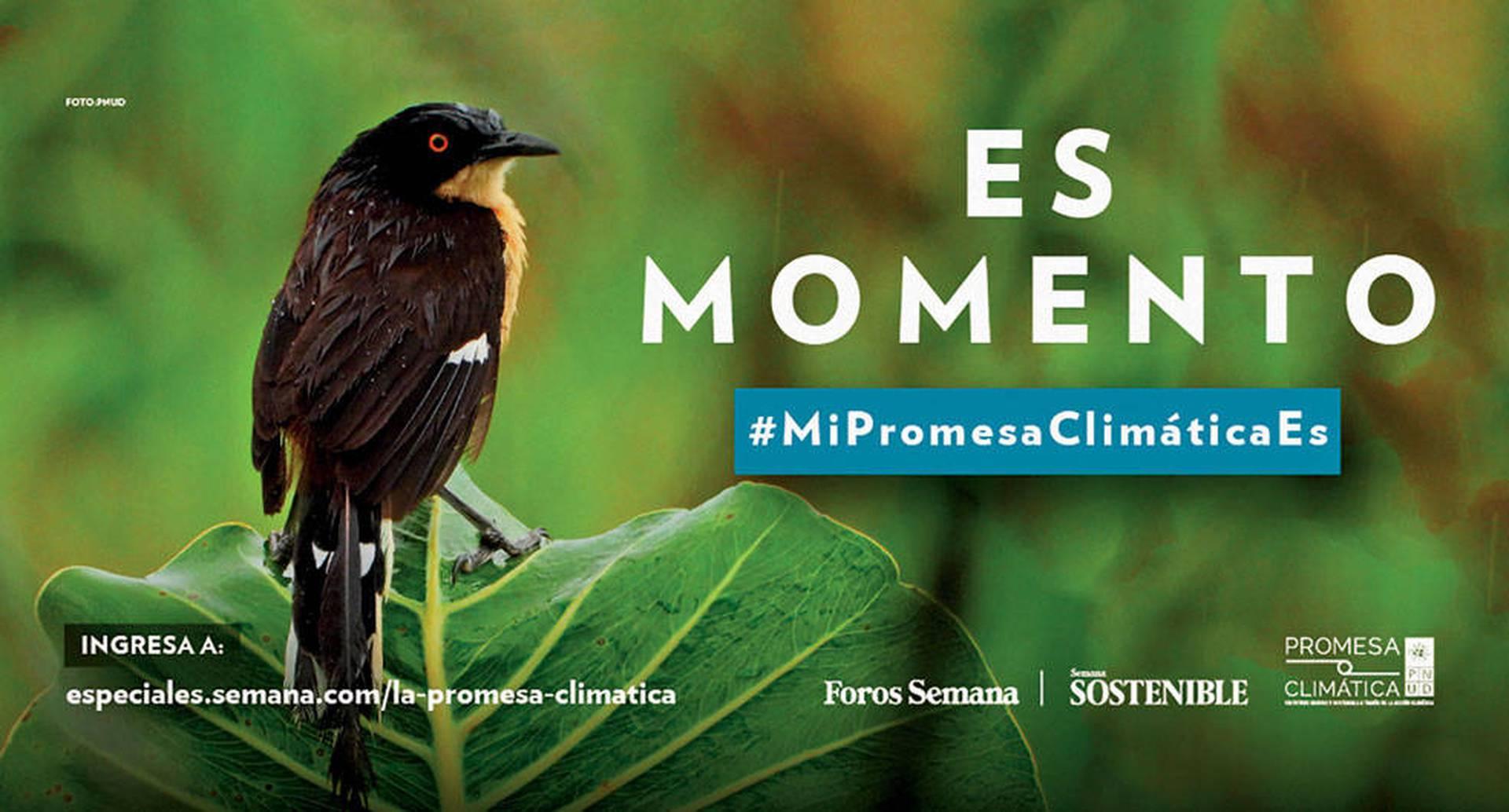 Esta iniciativa invita a toda la sociedad colombiana a que imagine un mundo diferente.