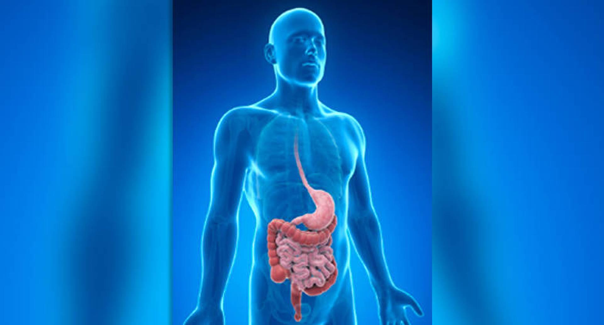 El actor estadounidense Chadwick Boseman perdió la batalla contra el cáncer de colon