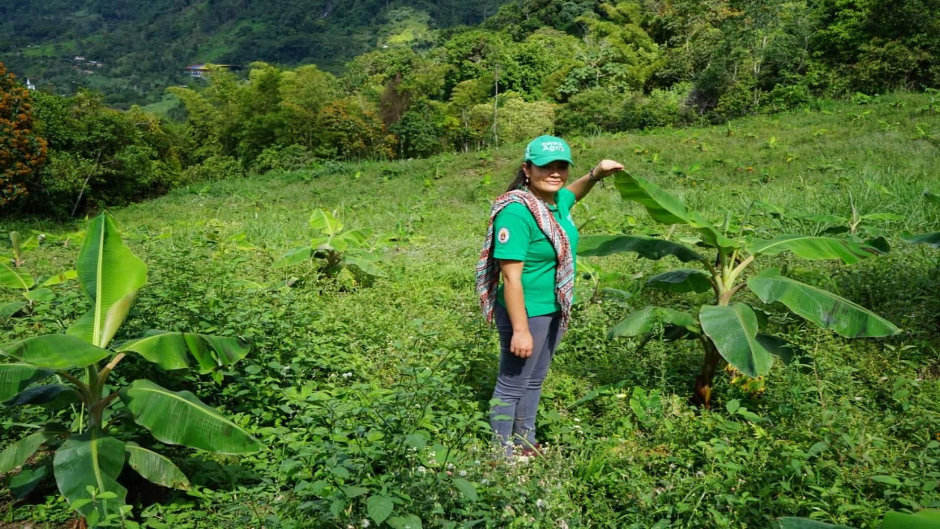 La iniciativa hace parte del proyecto Boyacá Agro