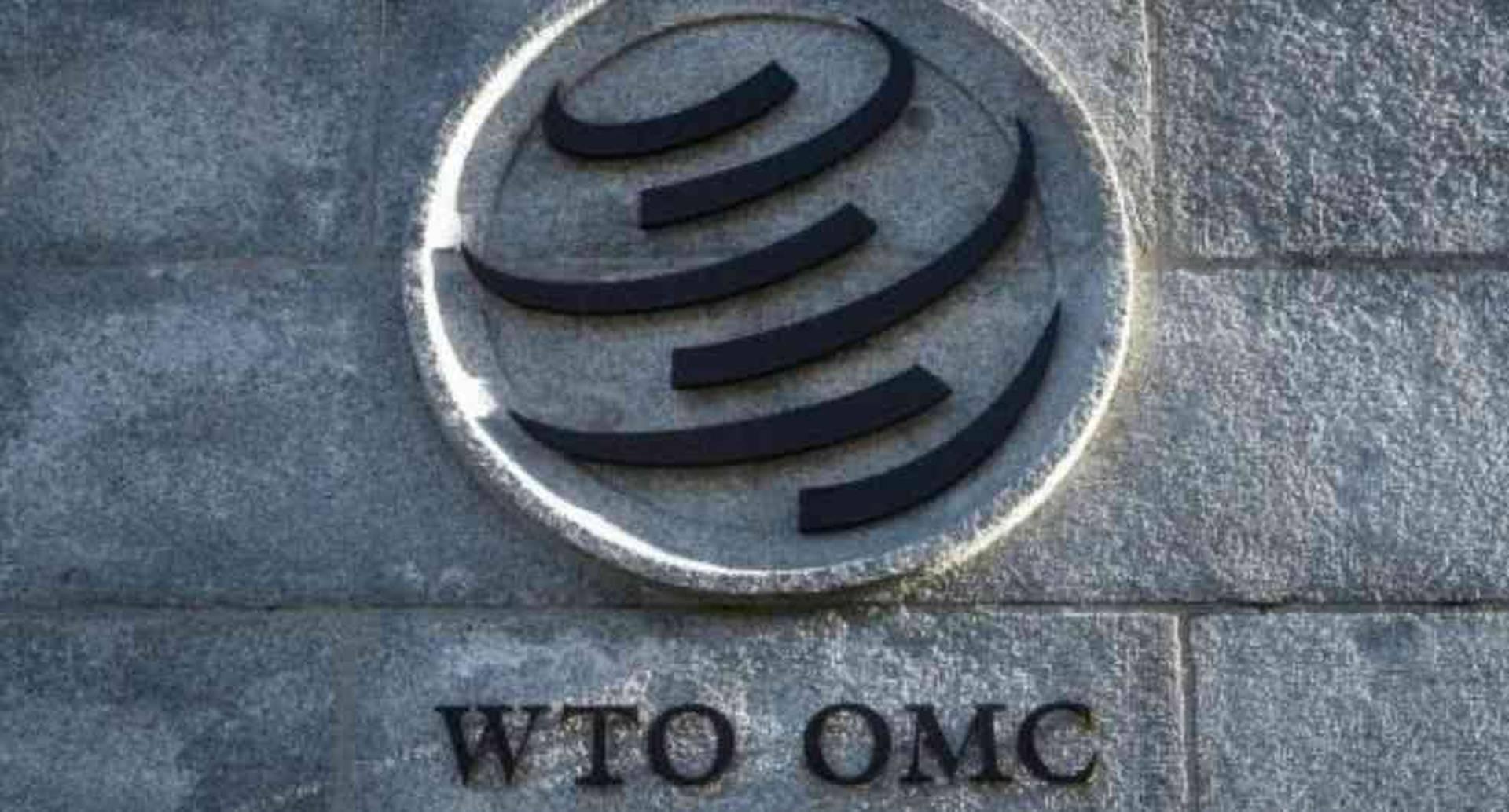 Estos son los siete candidatos para dirigir la Organización Mundial de Comercio / Foto: AFP