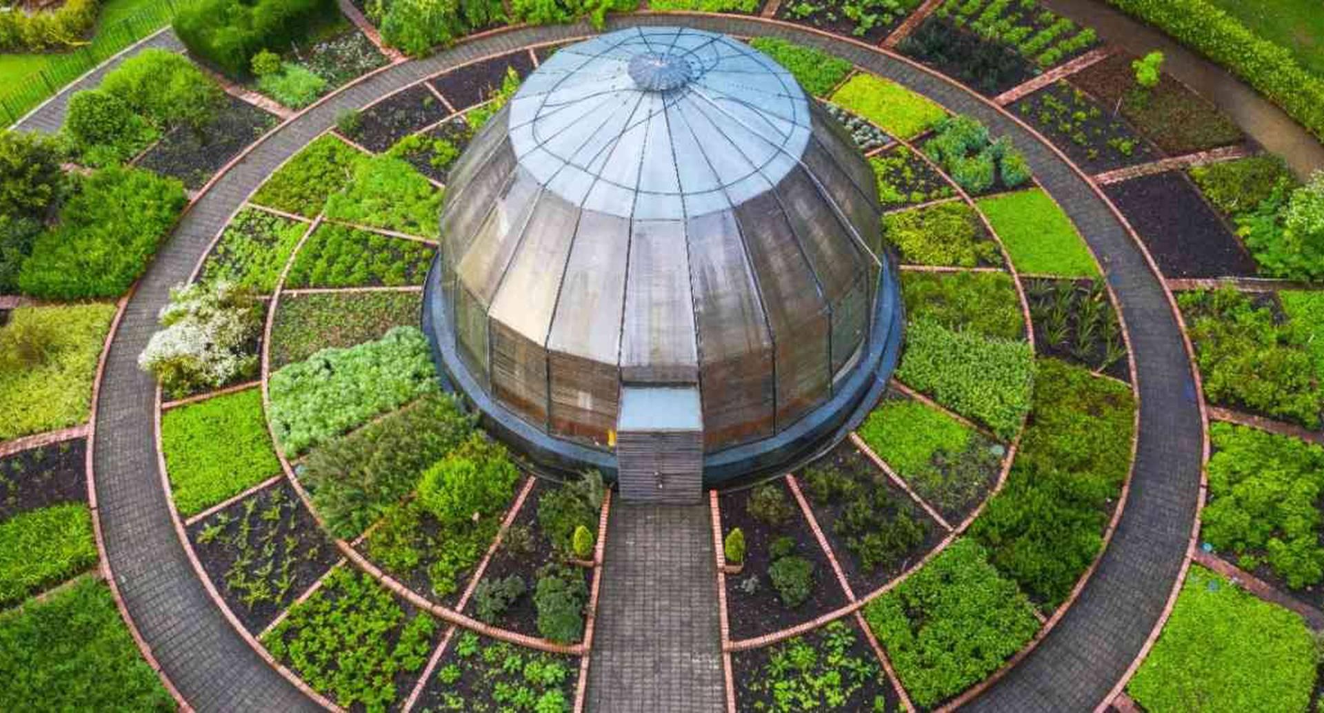 En el Jardín Botánico de Bogotá es posible encontrar cerca de 55.000 individuos de plantas, de es posible encontrar cerca de 55.000 individuos de plantas, de 304 familias y 469 géneros. Foto: JBB.