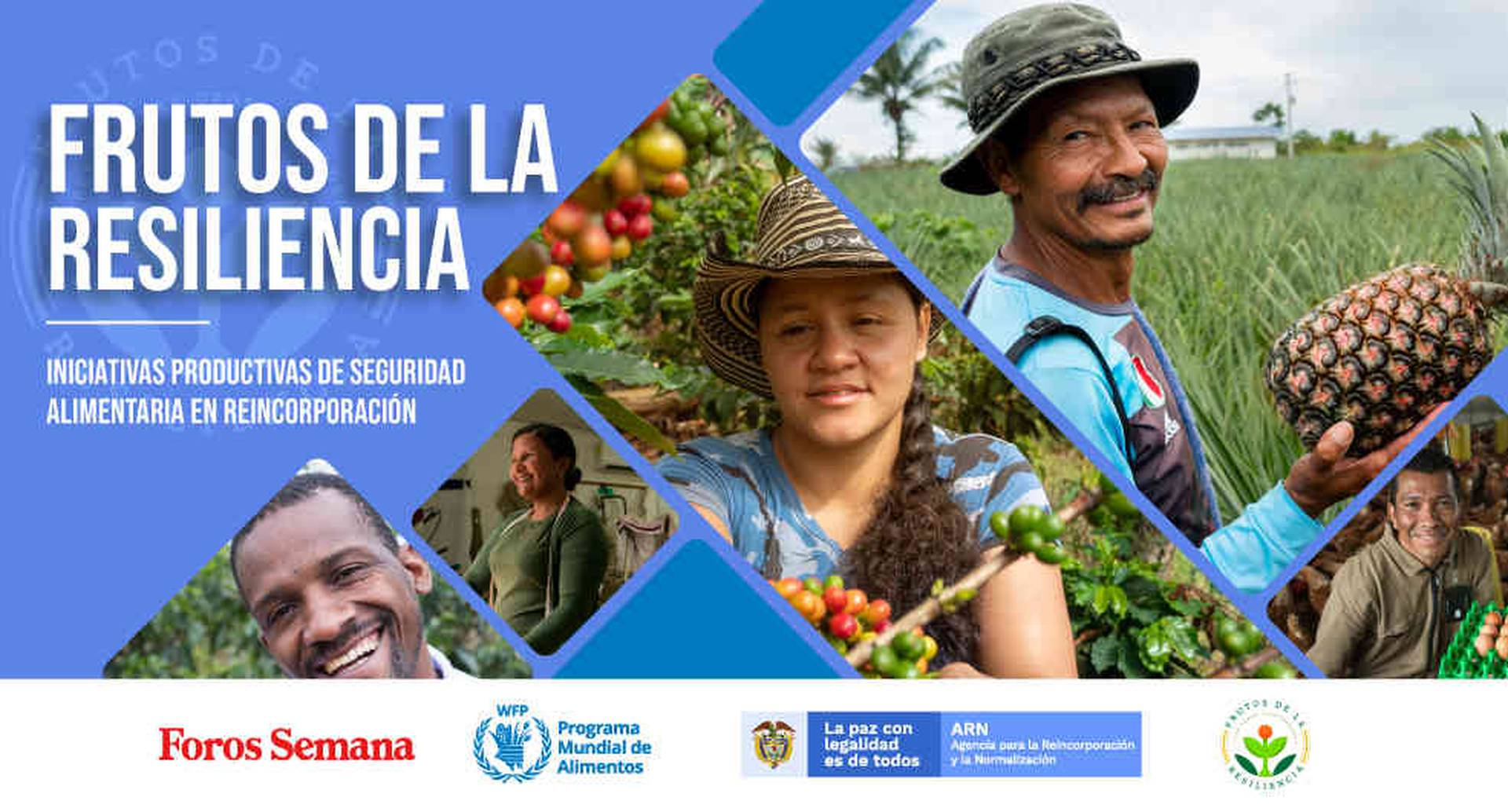 FARC: excombatientes y las iniciativas para su reintegración social Foros Semana