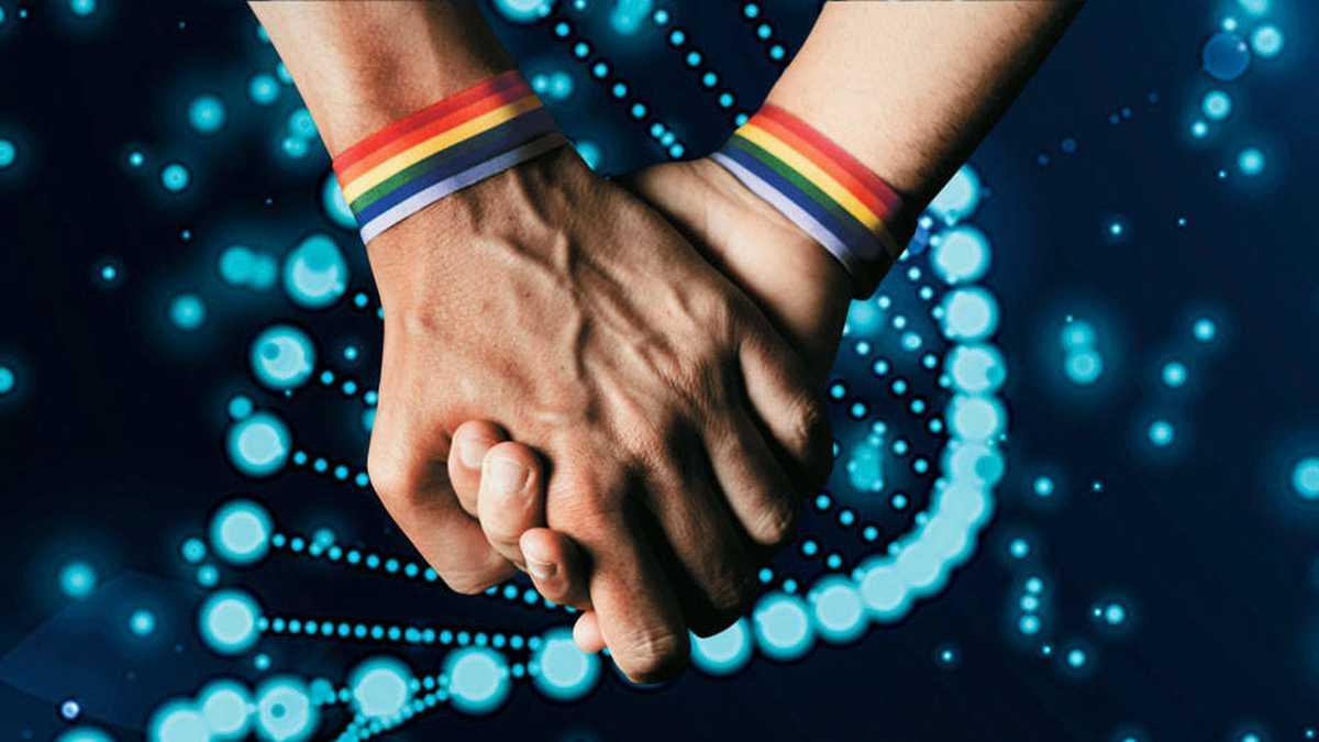 GENÉTICA DE LA HOMOSEXUALIDAD
