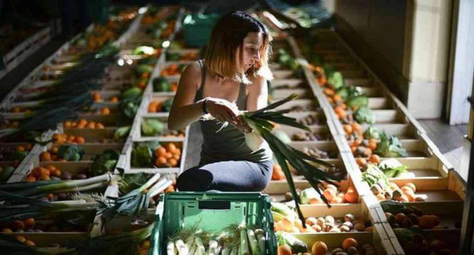 Hay estrategias para reducir la cantidad de alimentos que desperdiciamos. Foto: Getty Images