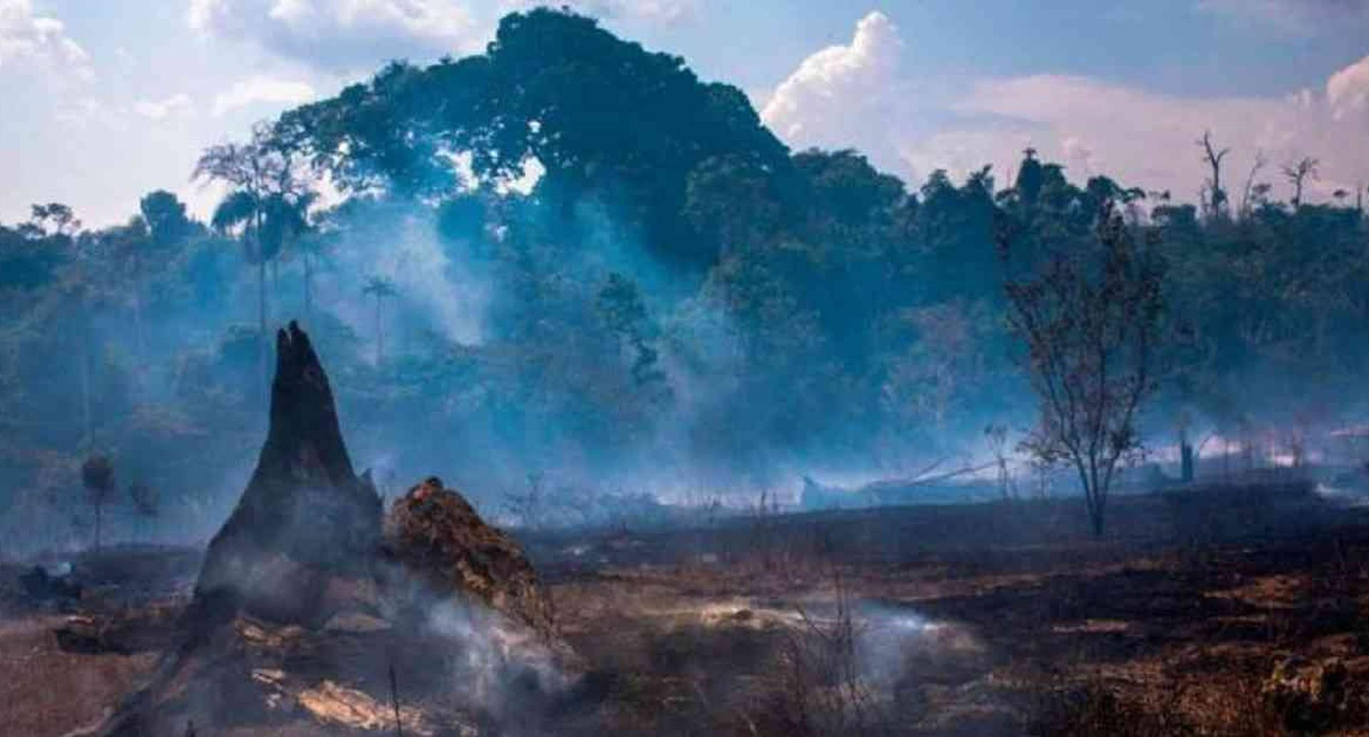 Miles de incendios siguen activos en la Amazonía, tanto en Brasil como en países colindantes. Foto: Getty Images