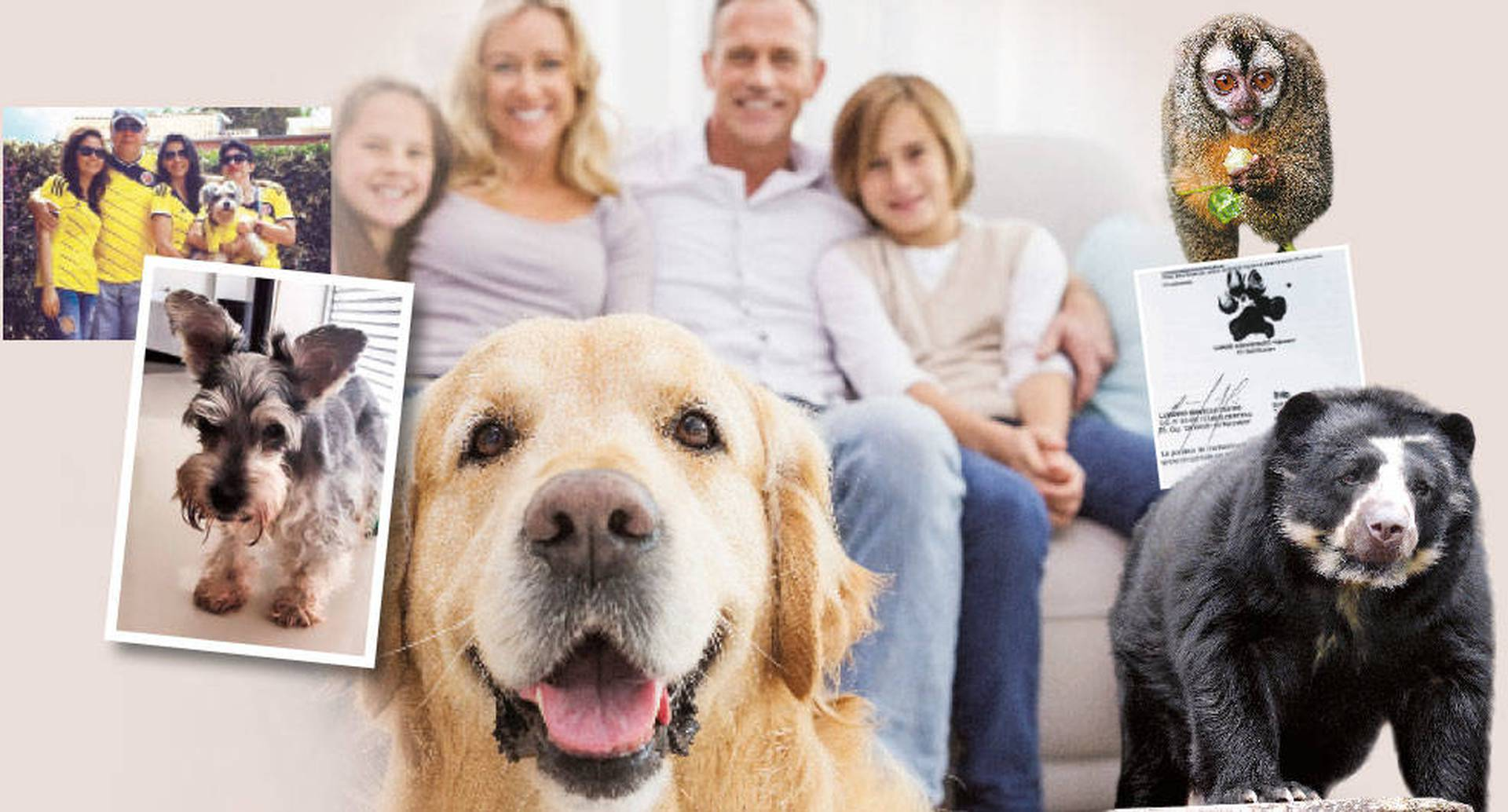 El caso de Clifford, un perro que padece epilepsia, revivió el debate sobre los animales como sujetos de derecho.