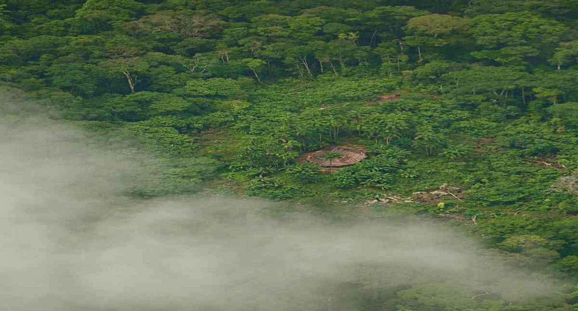 Coronavirus en la Amazonía: más de tres mil soldados previenen incendios