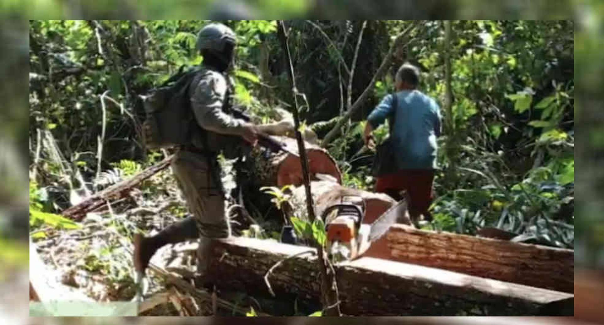 Judicializados presuntos responsables del deterioro de la Sierra la Macarena