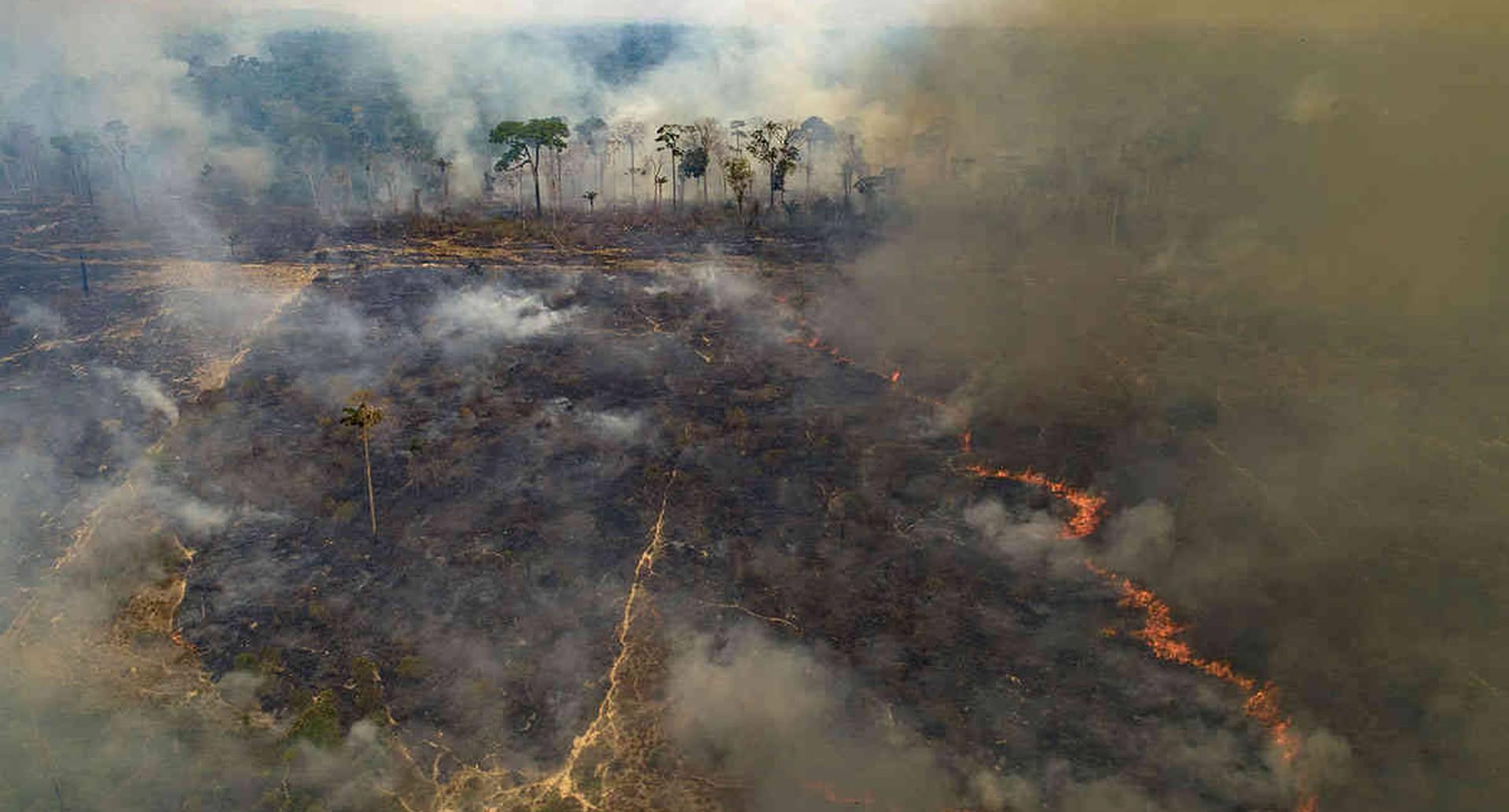 El fuego consume tierras recientemente deforestadas por ganaderos cerca de Novo Progresso, estado de Pará, Brasil, el domingo 23 de agosto de 2020. Los ambientalistas dicen que la Amazonía ha perdido alrededor del 17 % de su área original y temen que la corriente pueda llegar a un punto en los próximos 15 a 30 años después del cual podría dejar de generar suficiente lluvia para mantenerse. Foto: Andre Penner / AP