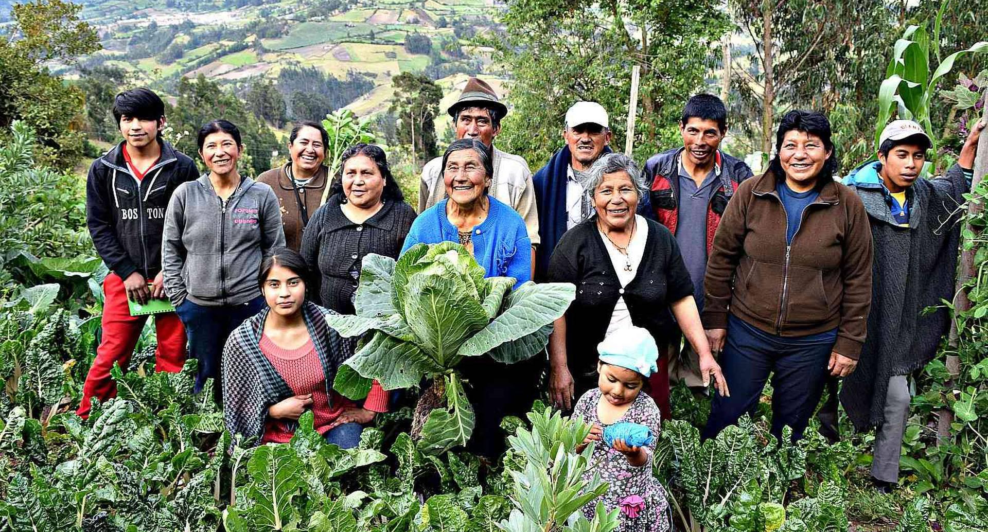 La Agricultura Campesina, Familiar y Comunitaria (ACFC) produce en Colombia más del 70 por ciento de los alimentos.