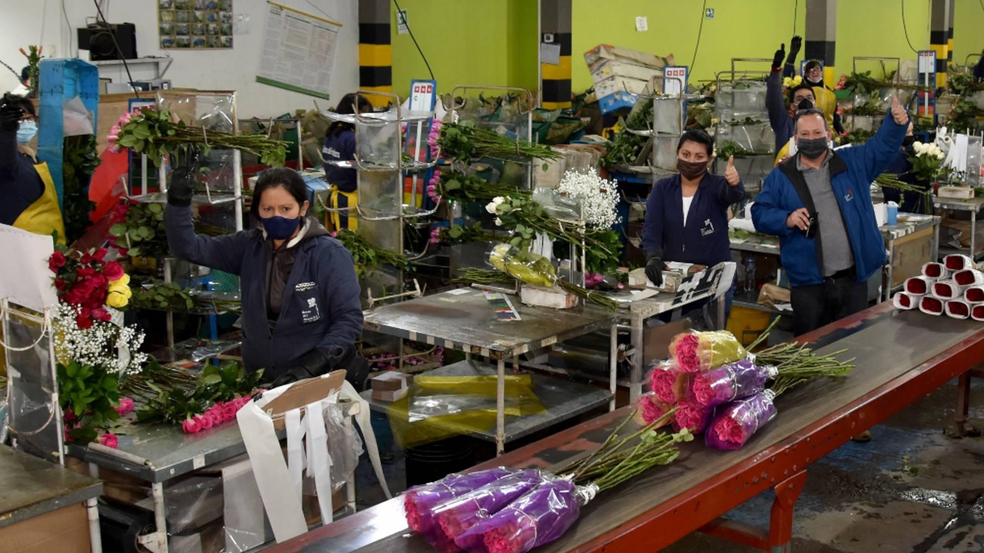 Trabajadores, empleados, industria, flores