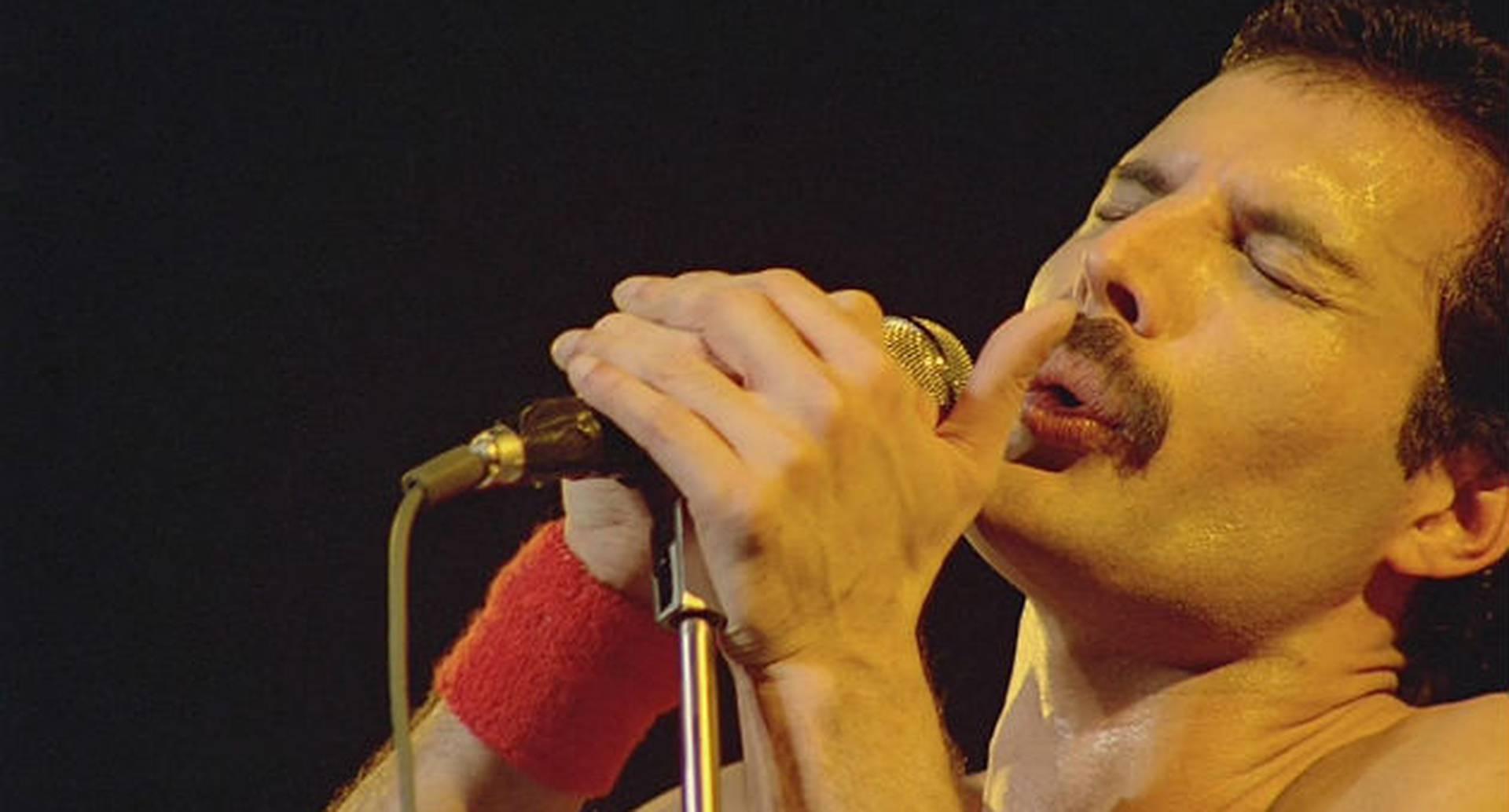 El 24 de noviembre de 2020 se cumplirán 29 años del fallecimiento de Freddie Mercury, cantante de Queen.