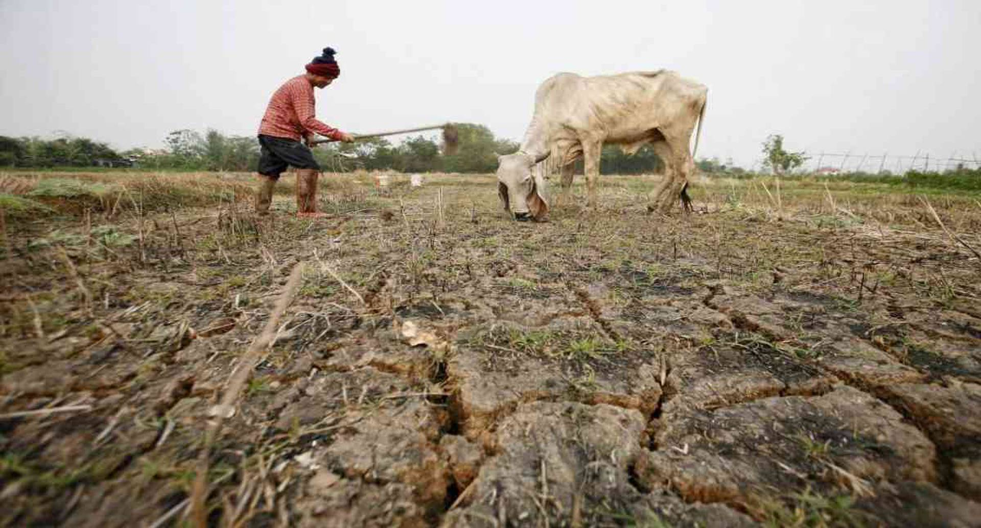 """Casi un tercio de la población global vive en países en situación de estrés hídrico """"extremadamente alto"""". Foto: archivo/Semana."""