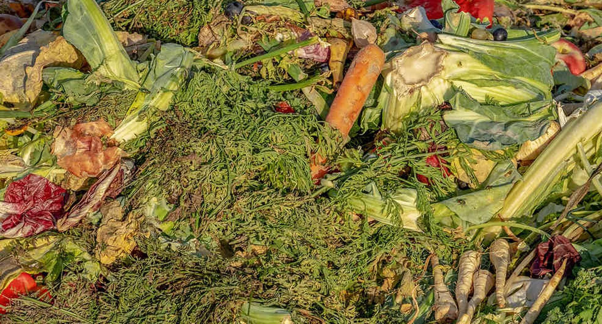 9,76 millones de toneladas se pierden y desperdician en el país cada año, según el Departamento Nacional de Planeación (DNP).