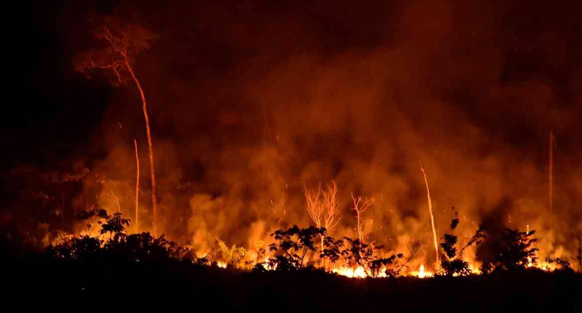 Incendio de vegetación nativa en la Amazonia colombiana. Foto: Jorge Contreras.