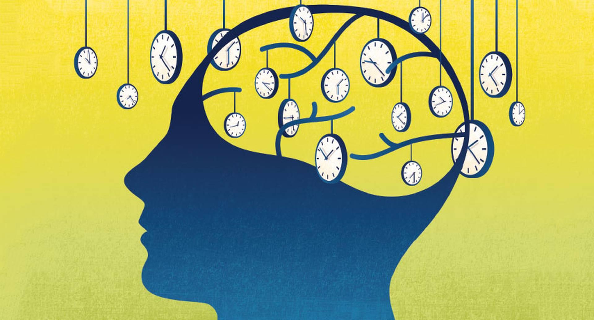Percepción tiempo y cerebro