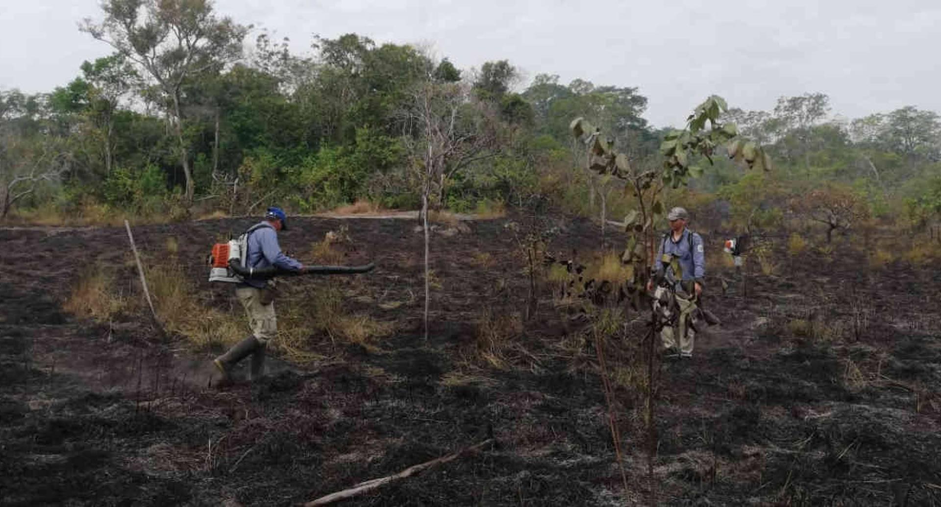 Guardaparques vienen ayudando a la extinción del incendio en el Parque Nacional El Tuparro. Foto: Parques Nacionales Naturales.