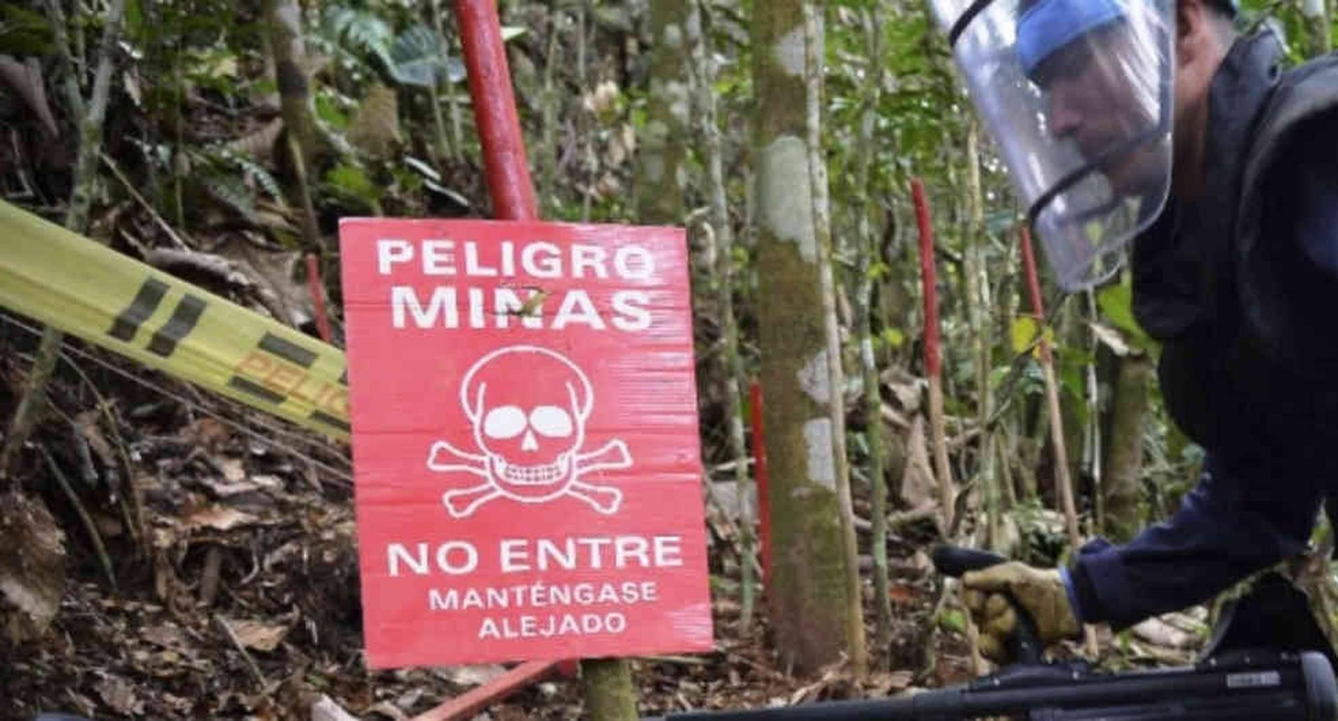 Gobierno pide plazo para cumplir la meta de erradicación de minas antipersona / Foto: AFP