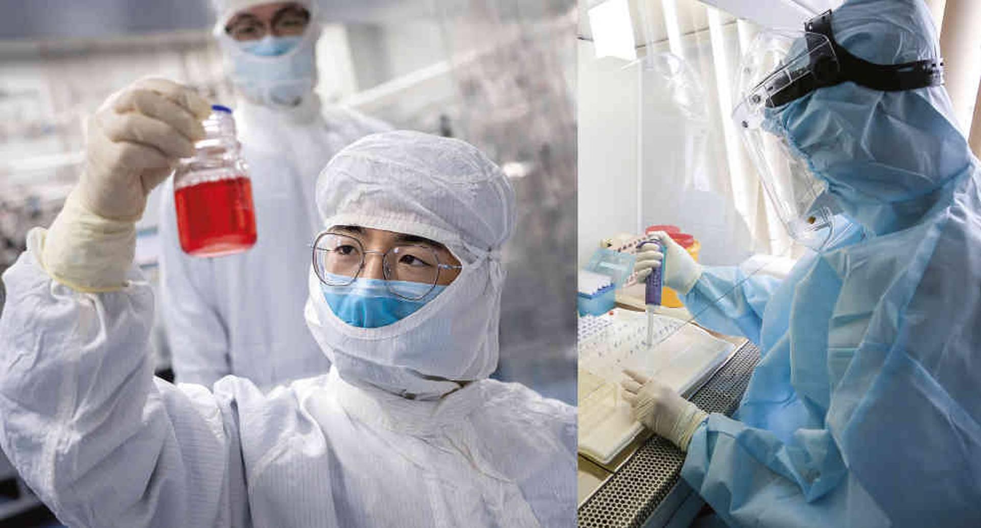 Cuatro vacunas están en la fase 3 de los ensayos clínicos, la última etapa antes de que las apruebe la FDA. Una producida por la estadounidense Moderna; otra por la Universidad de Oxford y AstraZeneca, en Reino Unido; una más por la alemana CureVac y la de Sinovac Biotech, fabricada en China.