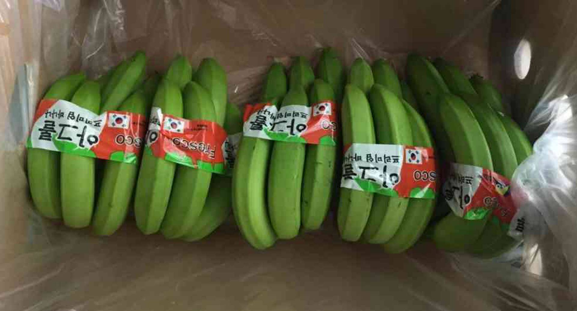 Las ventas internacionales de banano de Colombia sumaron, entre enero y mayo, 383,4 millones de dólares.